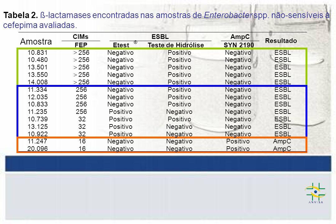 Tabela 2. ß-lactamases encontradas nas amostras de Enterobacter spp