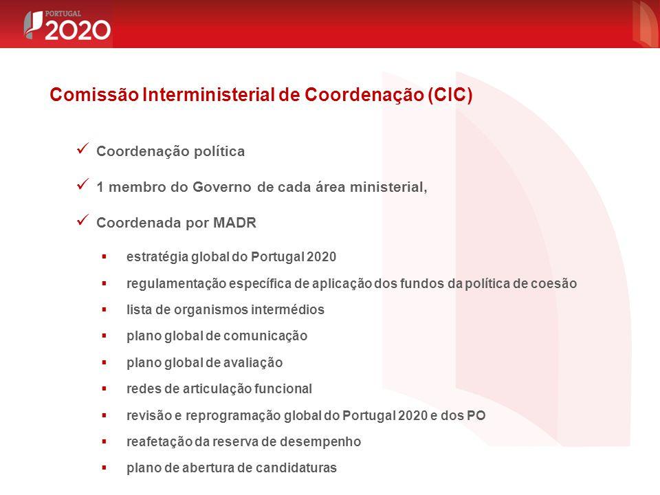 Comissão Interministerial de Coordenação (CIC)