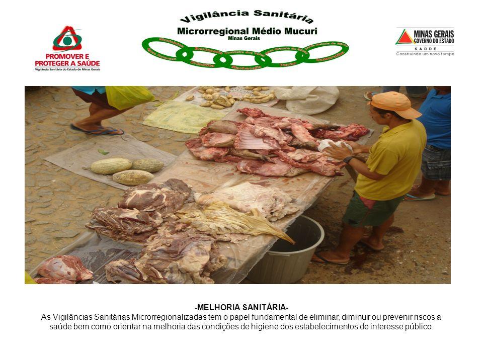 MELHORIA SANITÁRIA- As Vigilâncias Sanitárias Microrregionalizadas tem o papel fundamental de eliminar, diminuir ou prevenir riscos a.