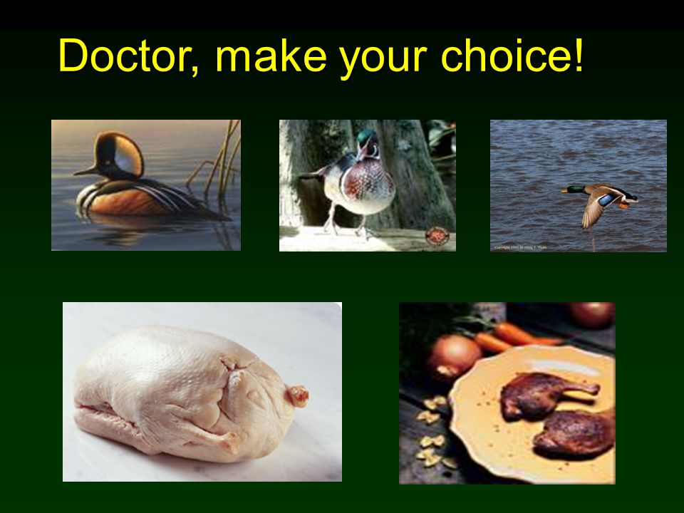 Doctor, make your choice!