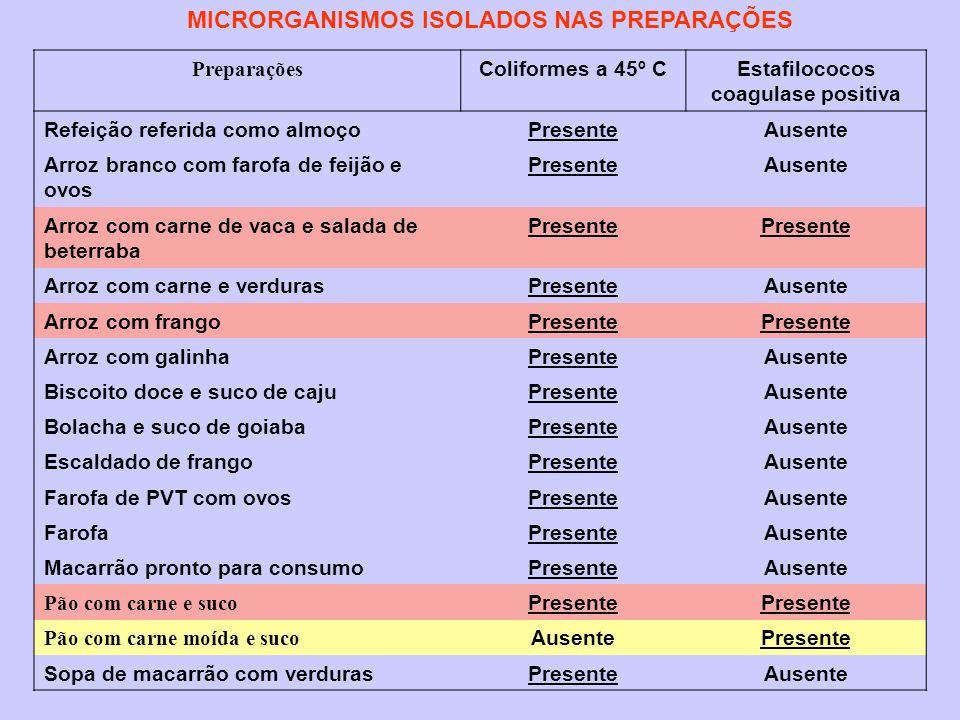 MICRORGANISMOS ISOLADOS NAS PREPARAÇÕES