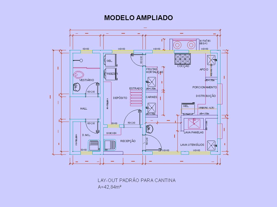 MODELO AMPLIADO