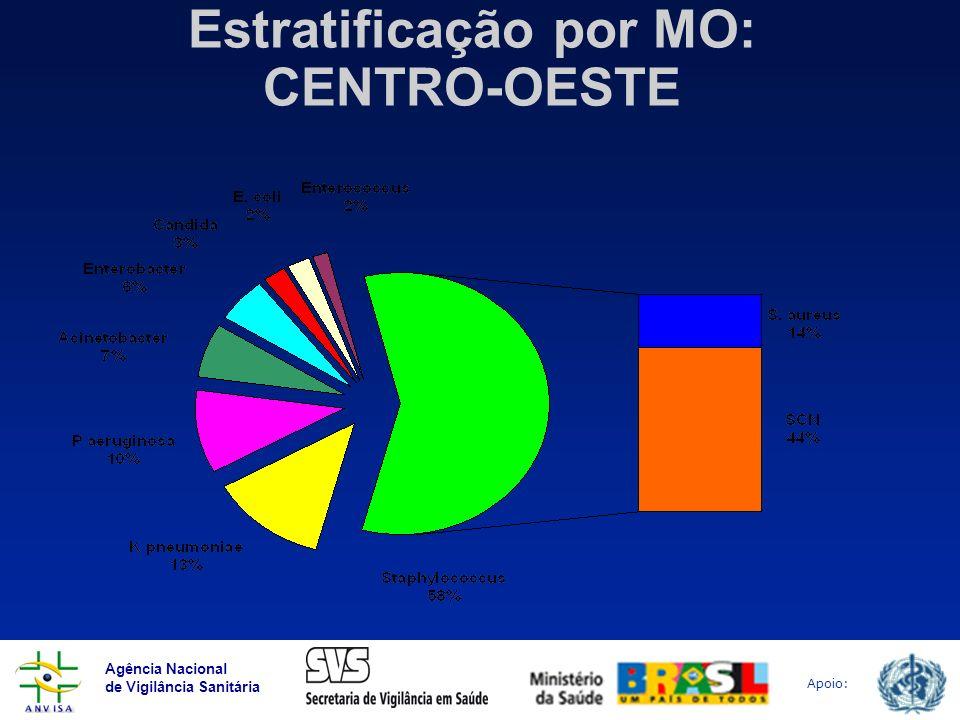 Estratificação por MO: CENTRO-OESTE