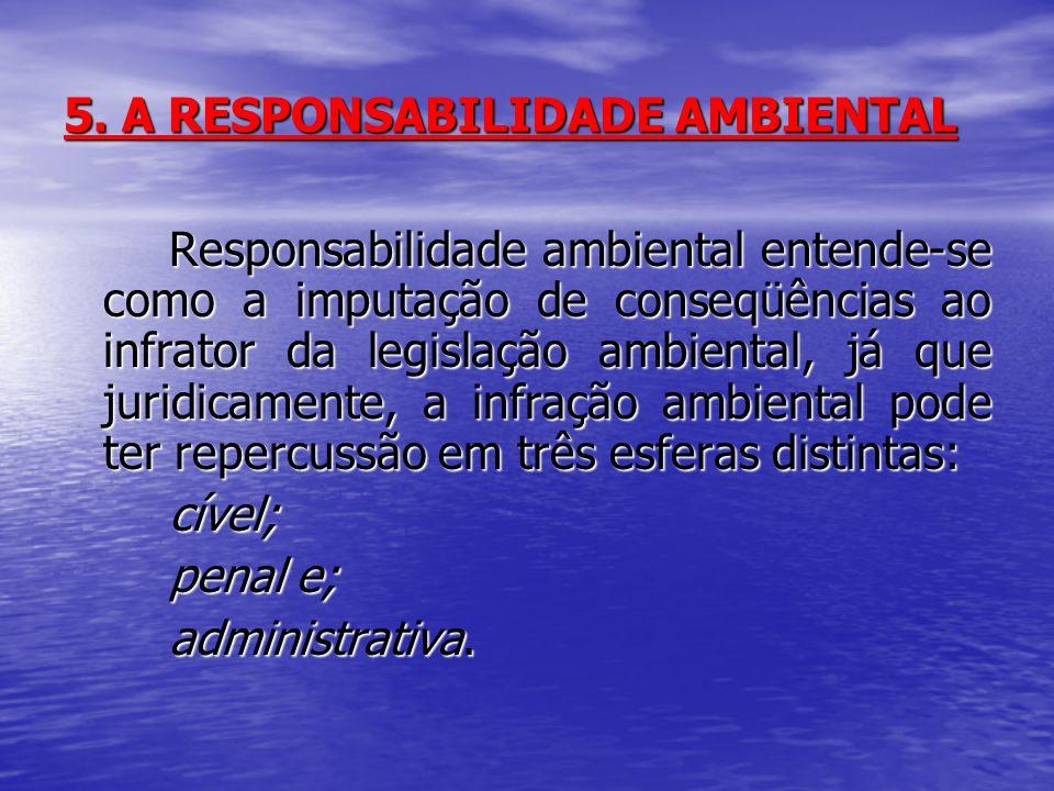 5. A RESPONSABILIDADE AMBIENTAL