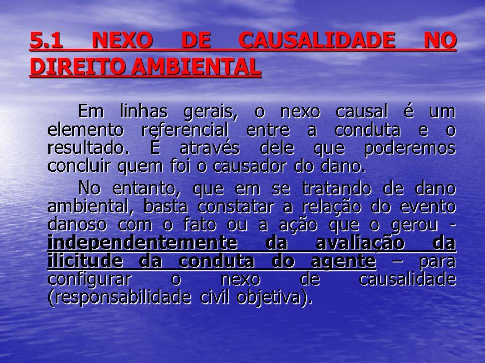 5.1 NEXO DE CAUSALIDADE NO DIREITO AMBIENTAL