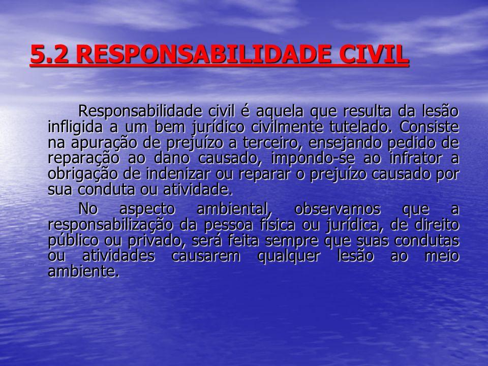 5.2 RESPONSABILIDADE CIVIL