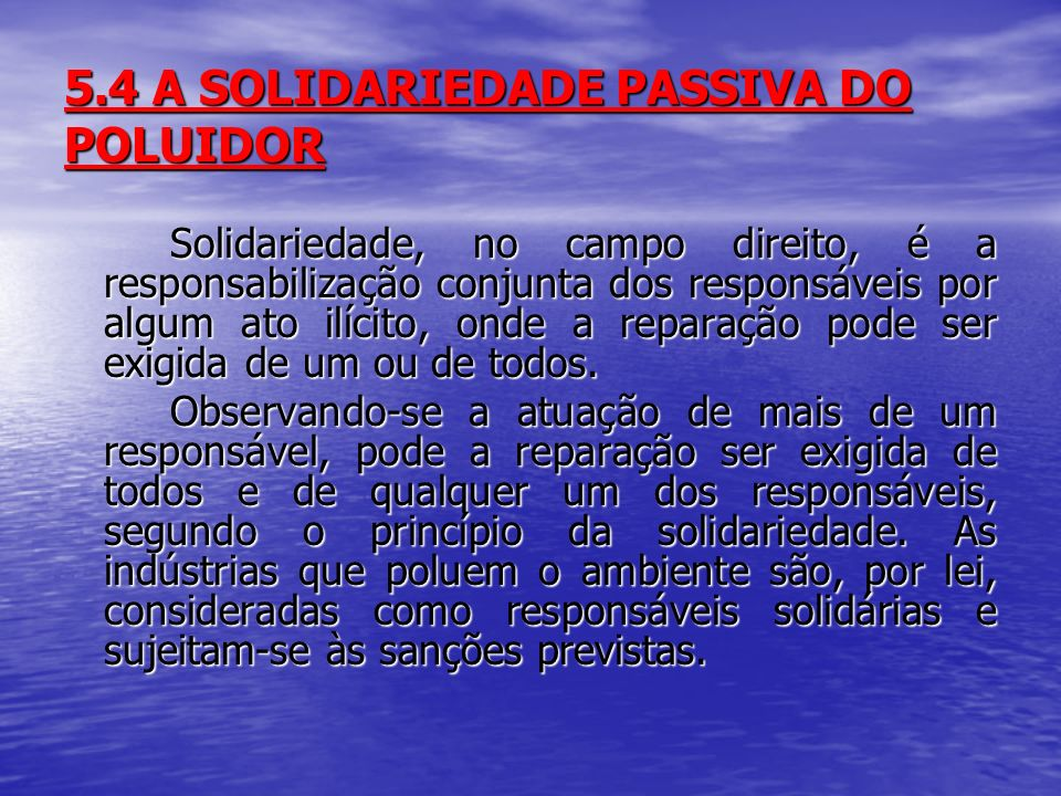 5.4 A SOLIDARIEDADE PASSIVA DO POLUIDOR