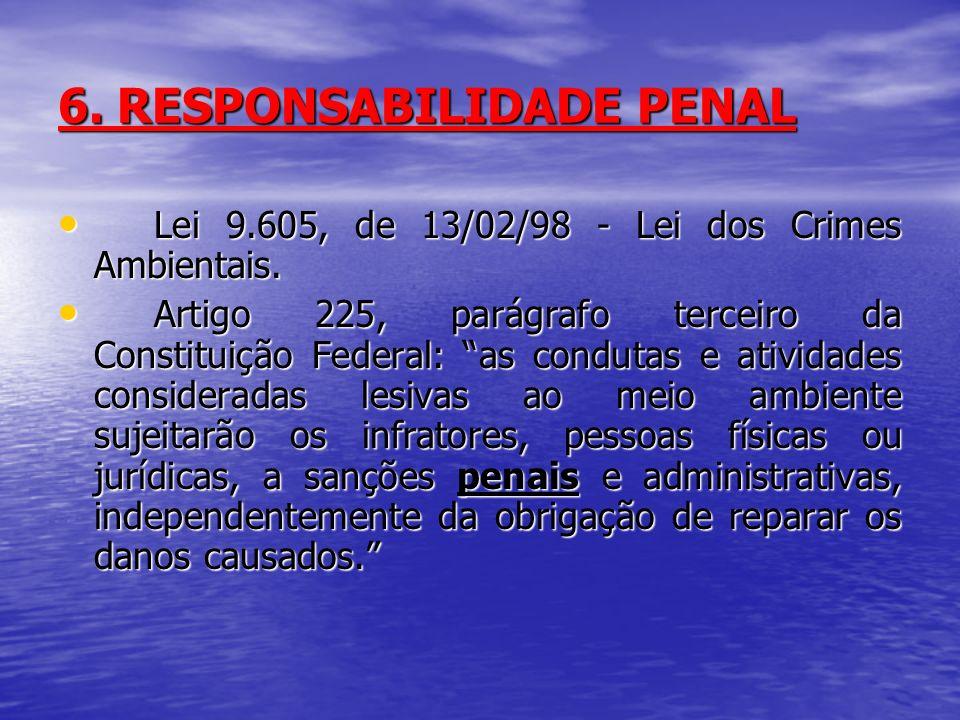 6. RESPONSABILIDADE PENAL