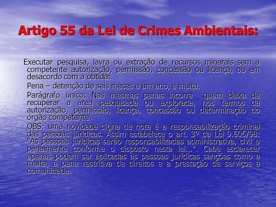Artigo 55 da Lei de Crimes Ambientais: