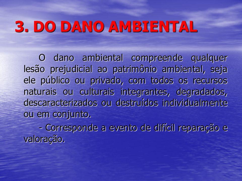 3. DO DANO AMBIENTAL