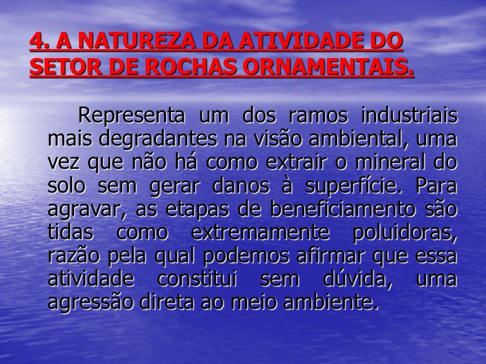 4. A NATUREZA DA ATIVIDADE DO SETOR DE ROCHAS ORNAMENTAIS.