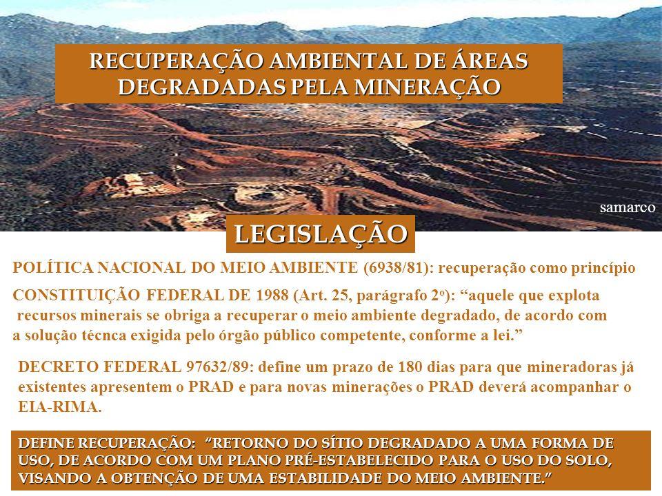 RECUPERAÇÃO AMBIENTAL DE ÁREAS DEGRADADAS PELA MINERAÇÃO
