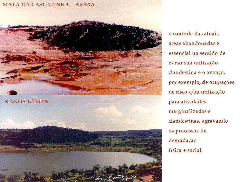 MATA DA CASCATINHA – ARAXÁ