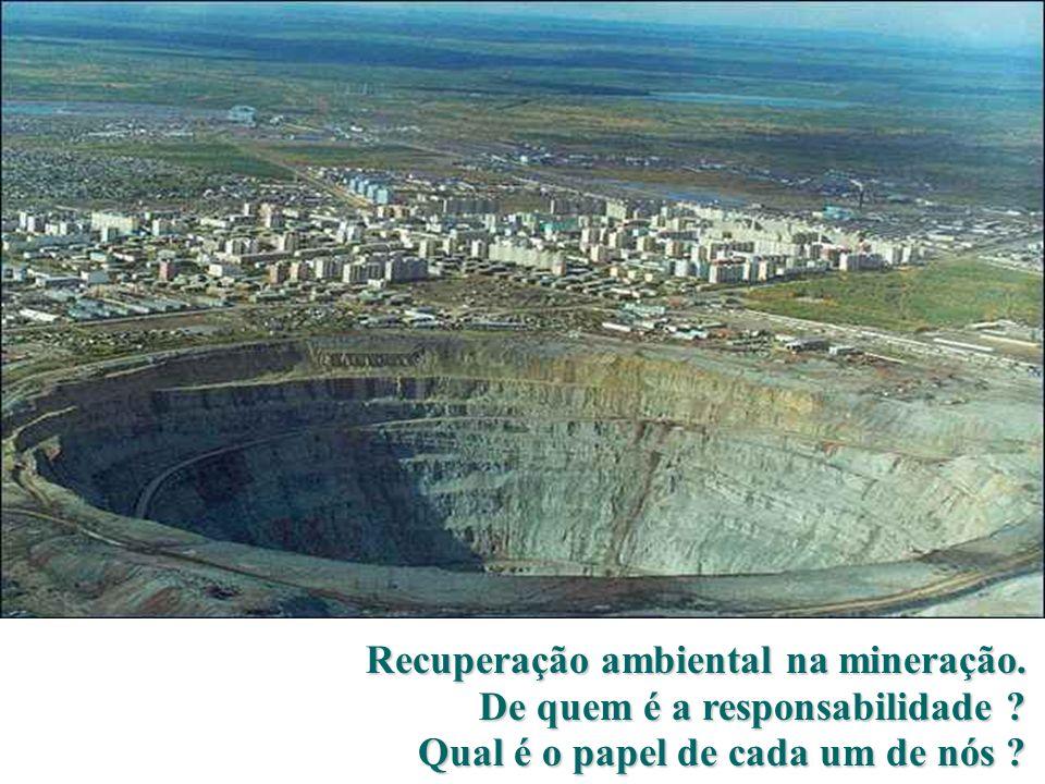 Recuperação ambiental na mineração.