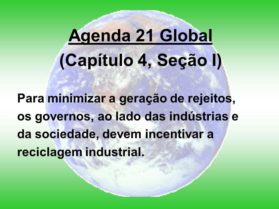 Agenda 21 Global (Capítulo 4, Seção I)