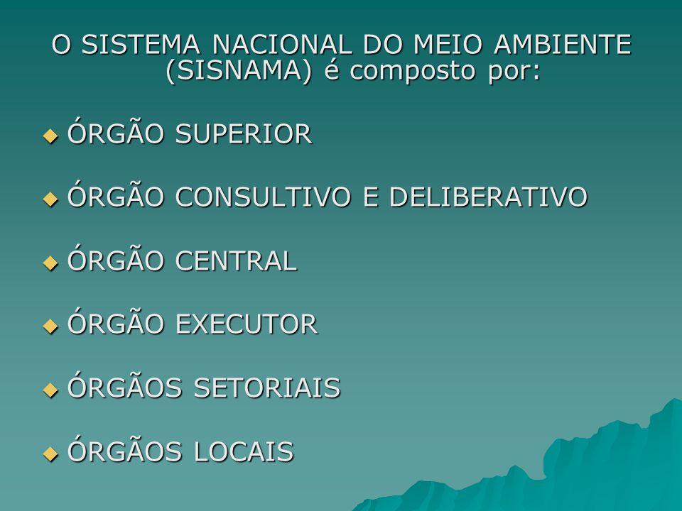 O SISTEMA NACIONAL DO MEIO AMBIENTE (SISNAMA) é composto por: