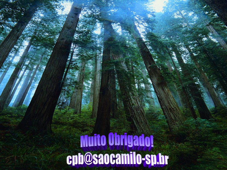 Muito Obrigado! cpb@saocamilo-sp.br