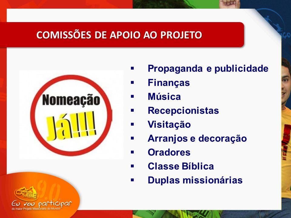 COMISSÕES DE APOIO AO PROJETO