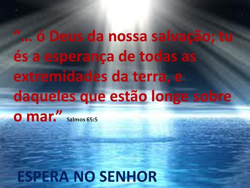… ó Deus da nossa salvação; tu és a esperança de todas as extremidades da terra, e daqueles que estão longe sobre o mar. Salmos 65:5