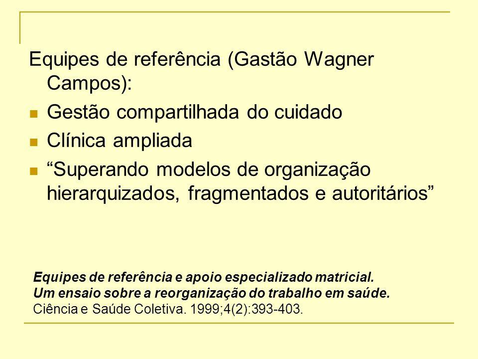 Equipes de referência (Gastão Wagner Campos):