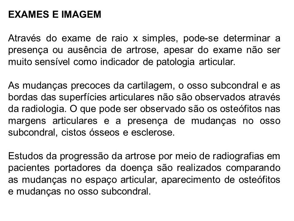 EXAMES E IMAGEM