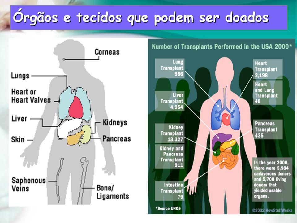 Órgãos e tecidos que podem ser doados