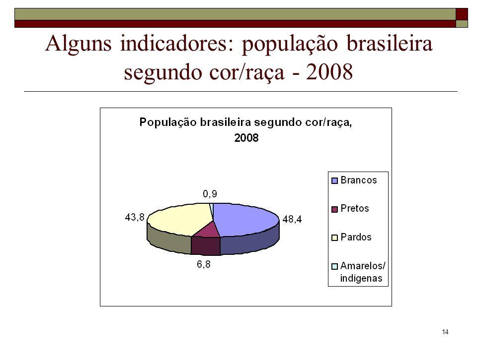 Alguns indicadores: população brasileira segundo cor/raça - 2008