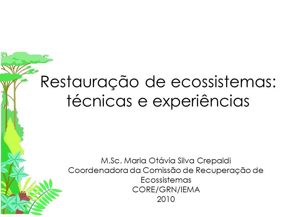 Restauração de ecossistemas: técnicas e experiências