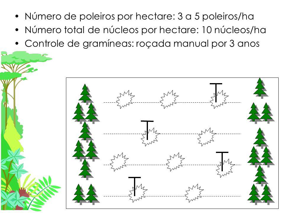 Número de poleiros por hectare: 3 a 5 poleiros/ha