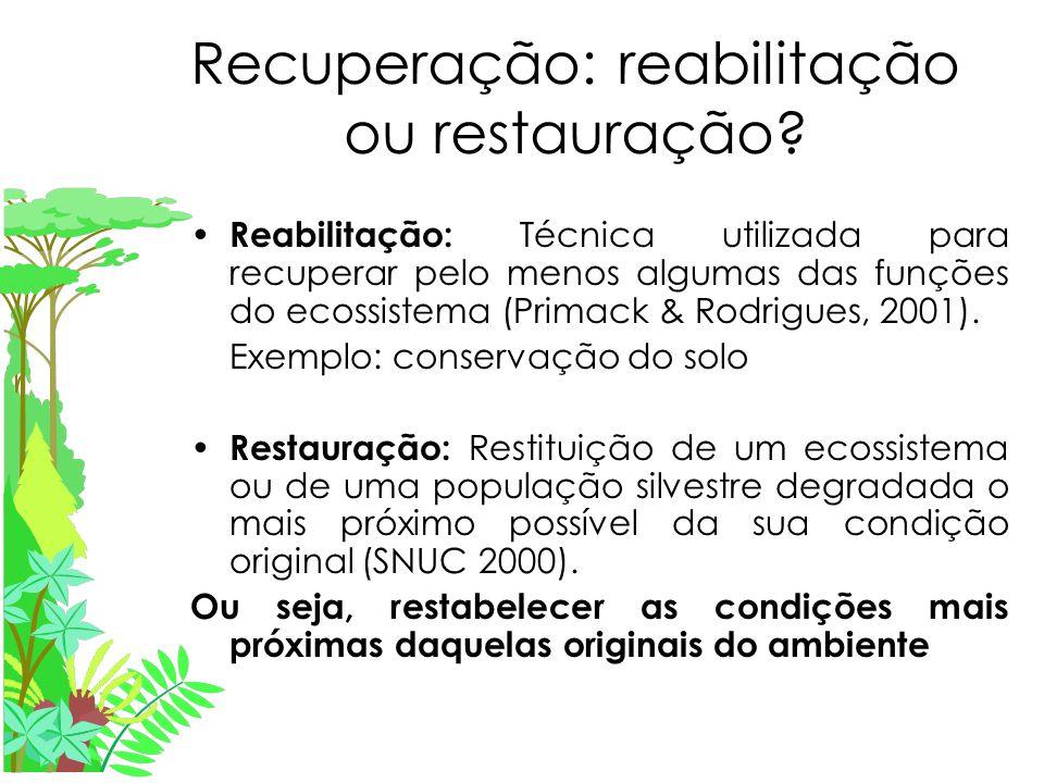 Recuperação: reabilitação ou restauração