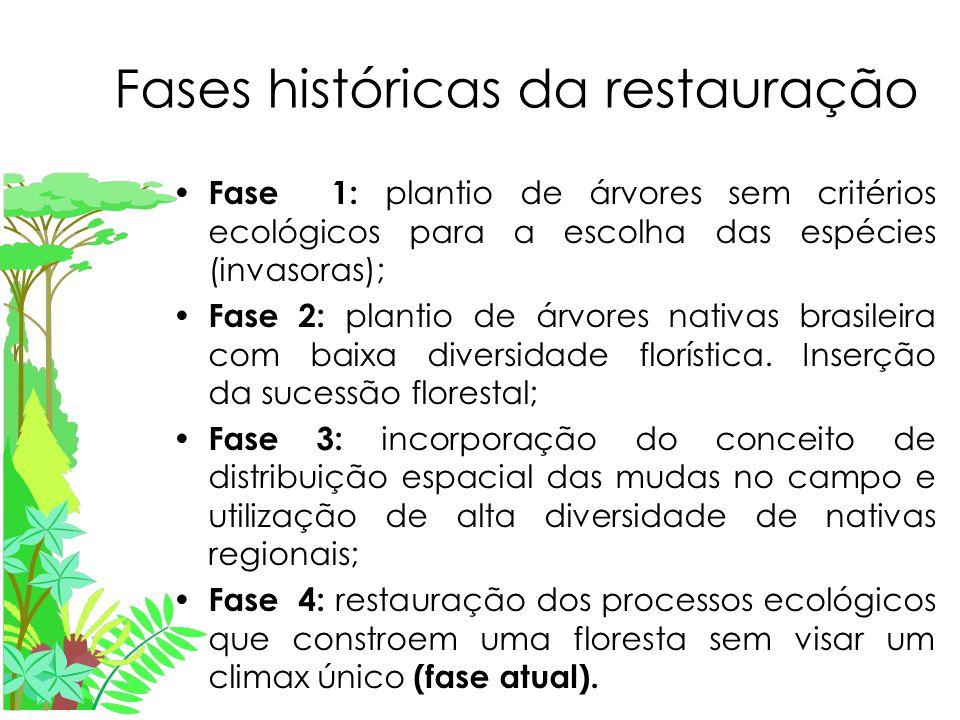 Fases históricas da restauração