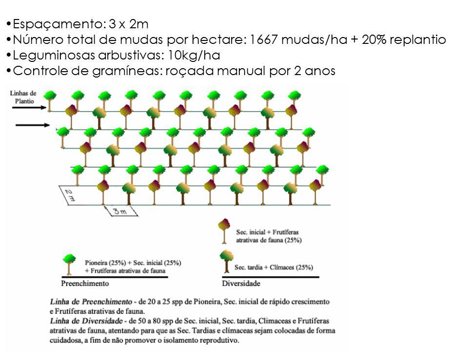 Espaçamento: 3 x 2m Número total de mudas por hectare: 1667 mudas/ha + 20% replantio. Leguminosas arbustivas: 10kg/ha.