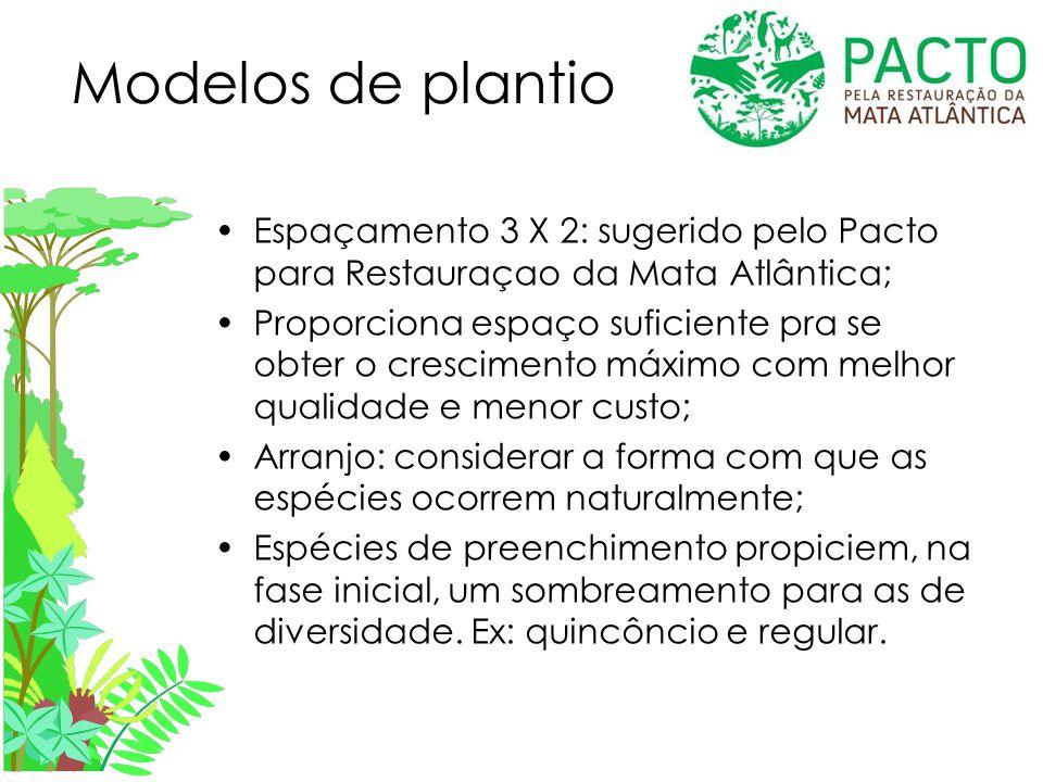 Modelos de plantio Espaçamento 3 X 2: sugerido pelo Pacto para Restauraçao da Mata Atlântica;