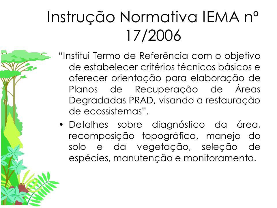 Instrução Normativa IEMA nº 17/2006