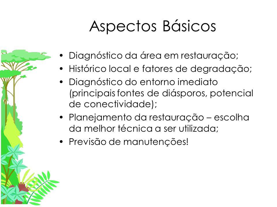 Aspectos Básicos Diagnóstico da área em restauração;