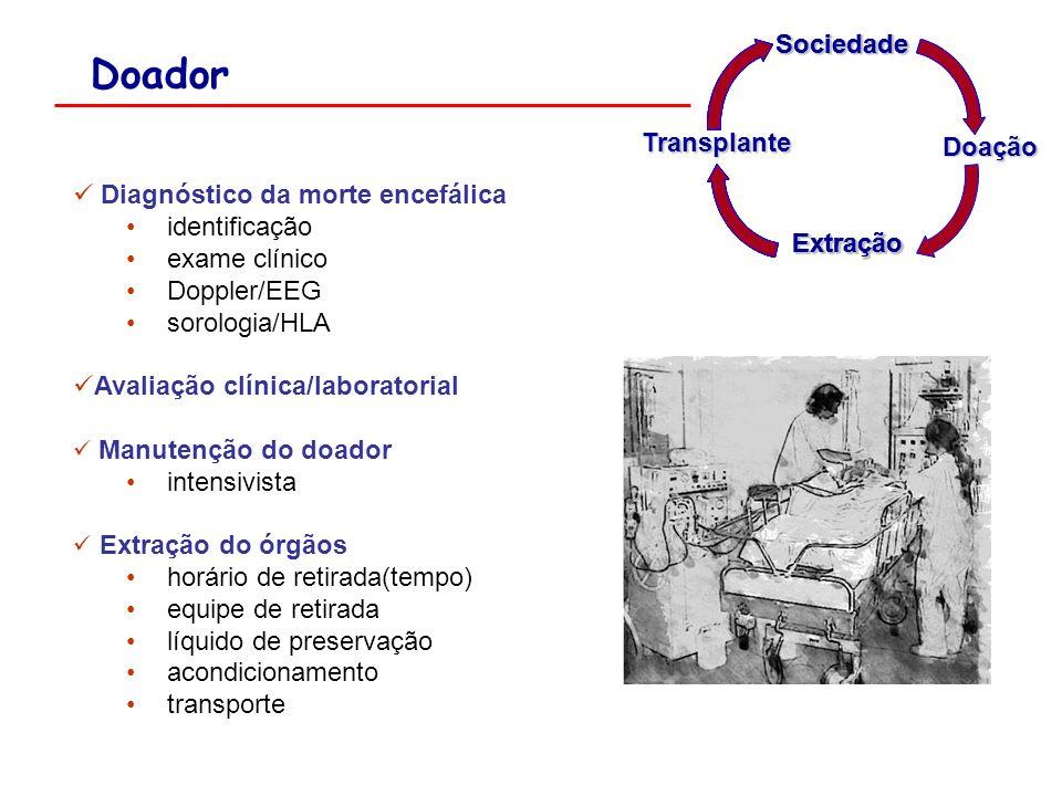 Doador Sociedade Transplante Doação Diagnóstico da morte encefálica