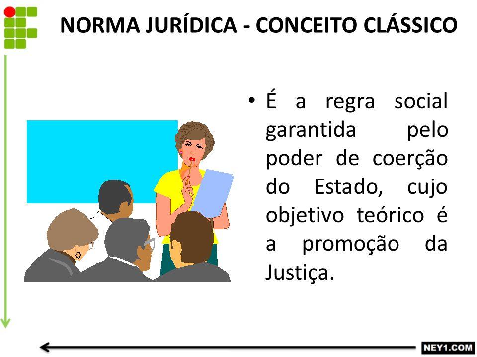 NORMA JURÍDICA - CONCEITO CLÁSSICO