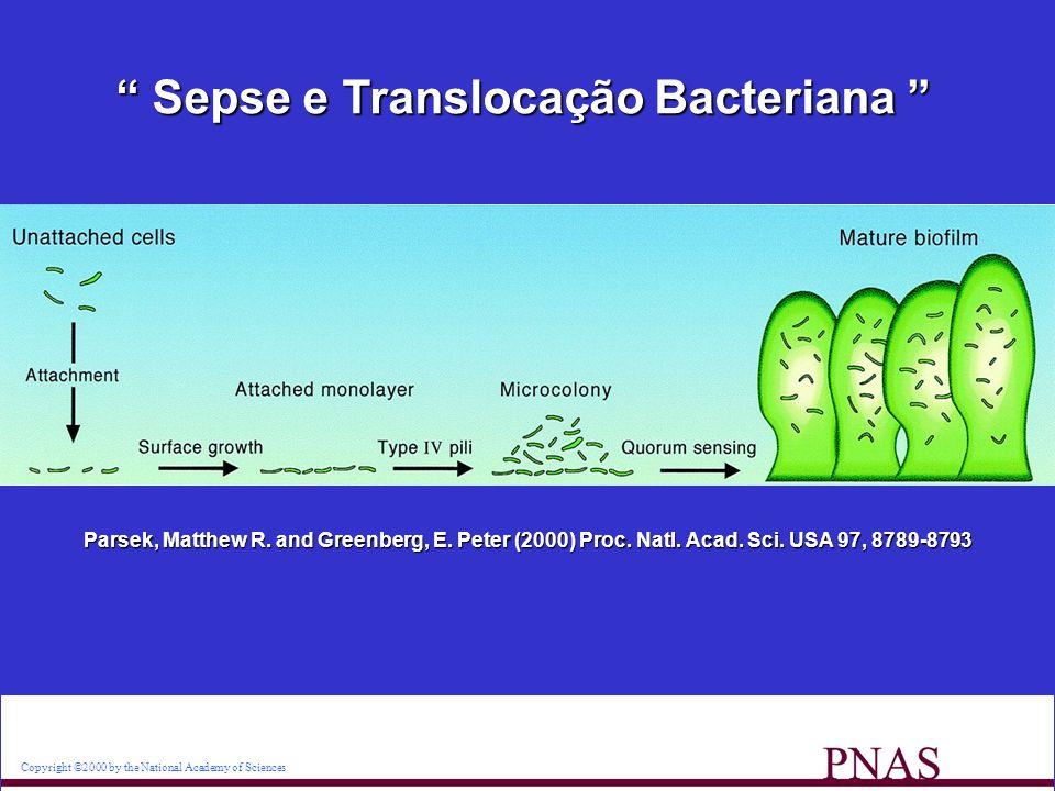 Sepse e Translocação Bacteriana