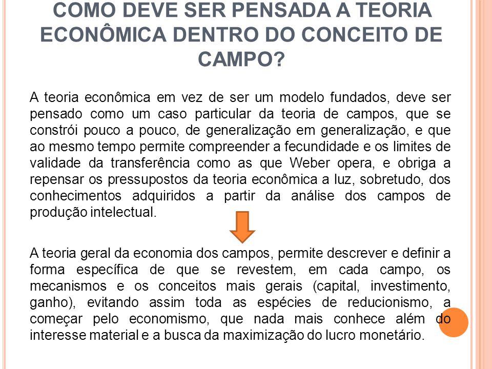 COMO DEVE SER PENSADA A TEORIA ECONÔMICA DENTRO DO CONCEITO DE CAMPO