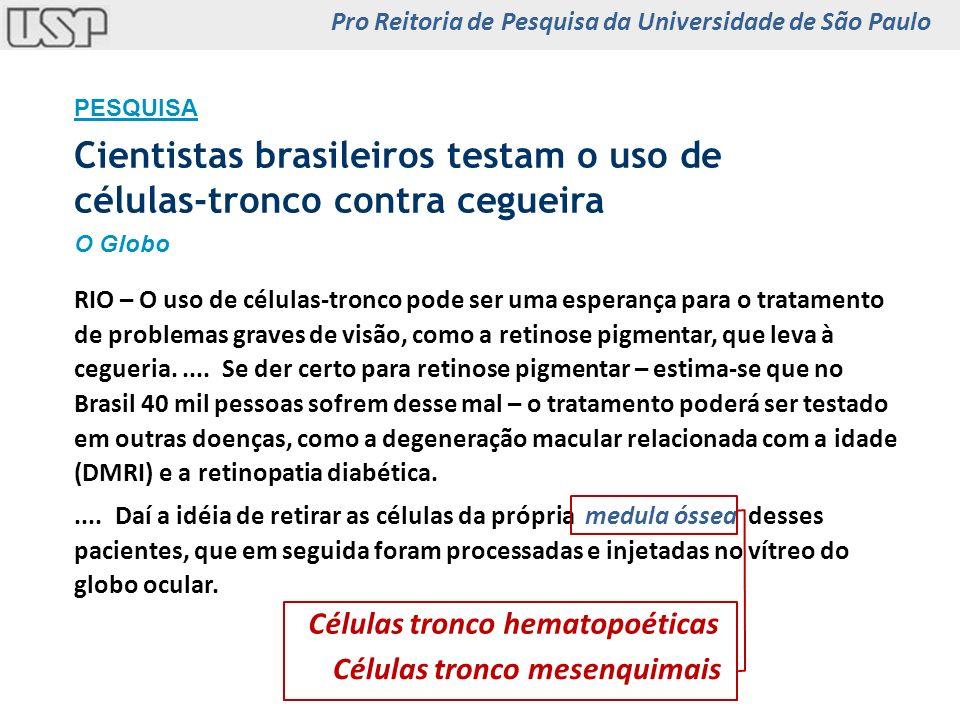Cientistas brasileiros testam o uso de células-tronco contra cegueira