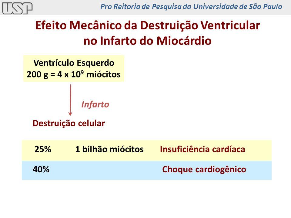 Efeito Mecânico da Destruição Ventricular no Infarto do Miocárdio