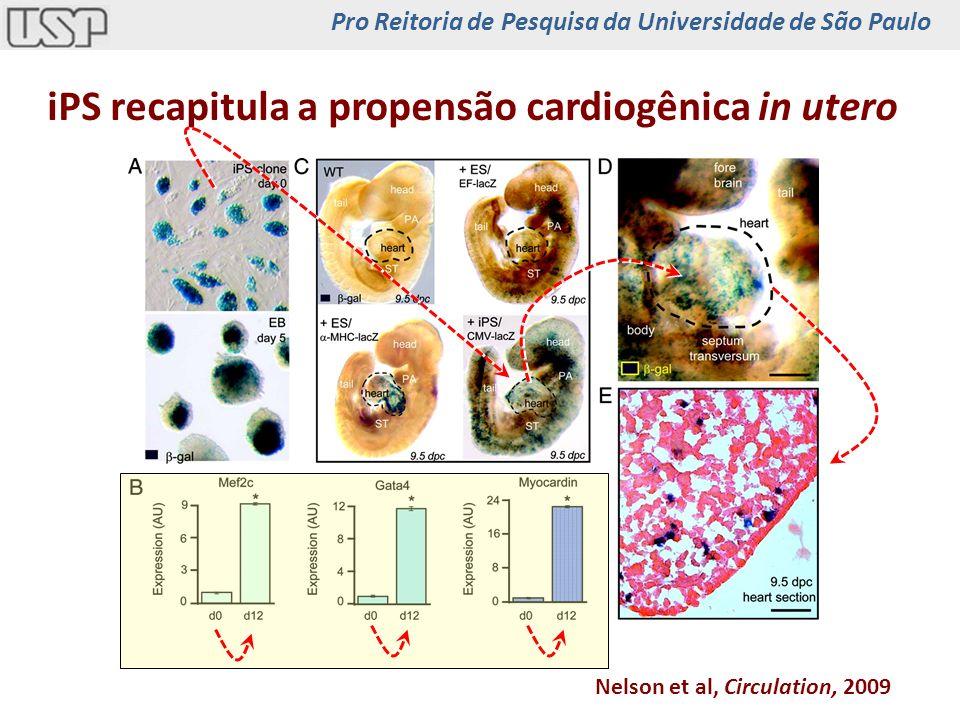 iPS recapitula a propensão cardiogênica in utero