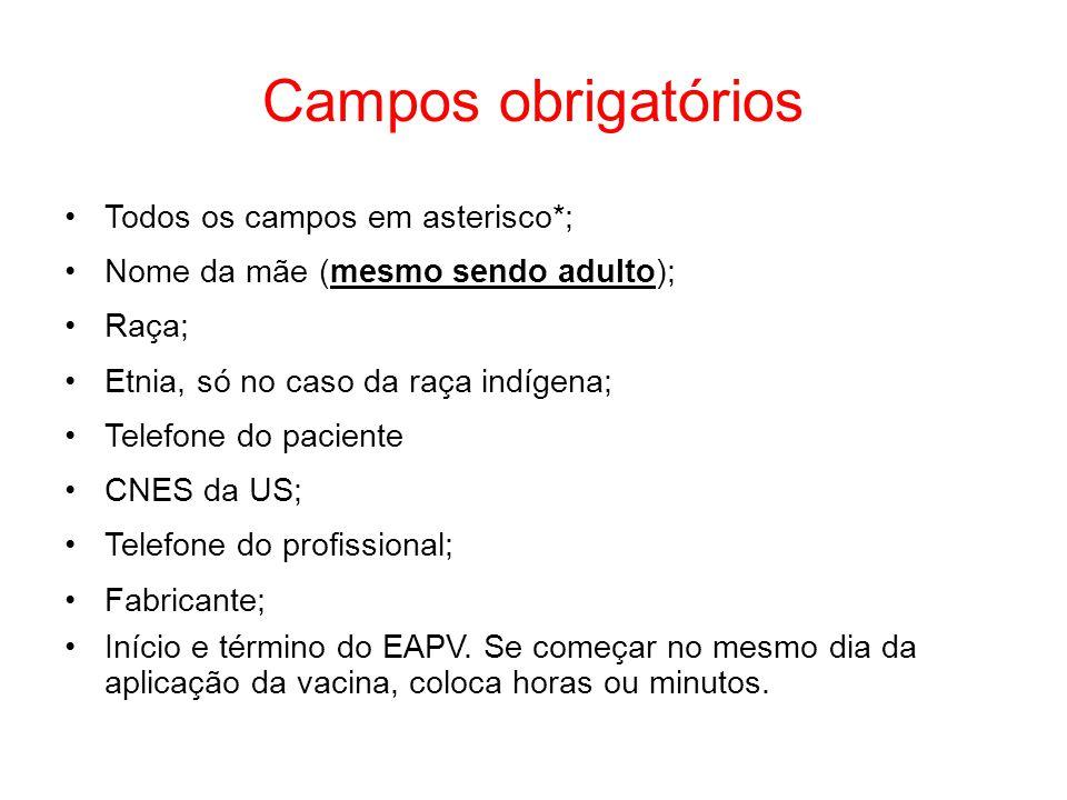 Campos obrigatórios Todos os campos em asterisco*;