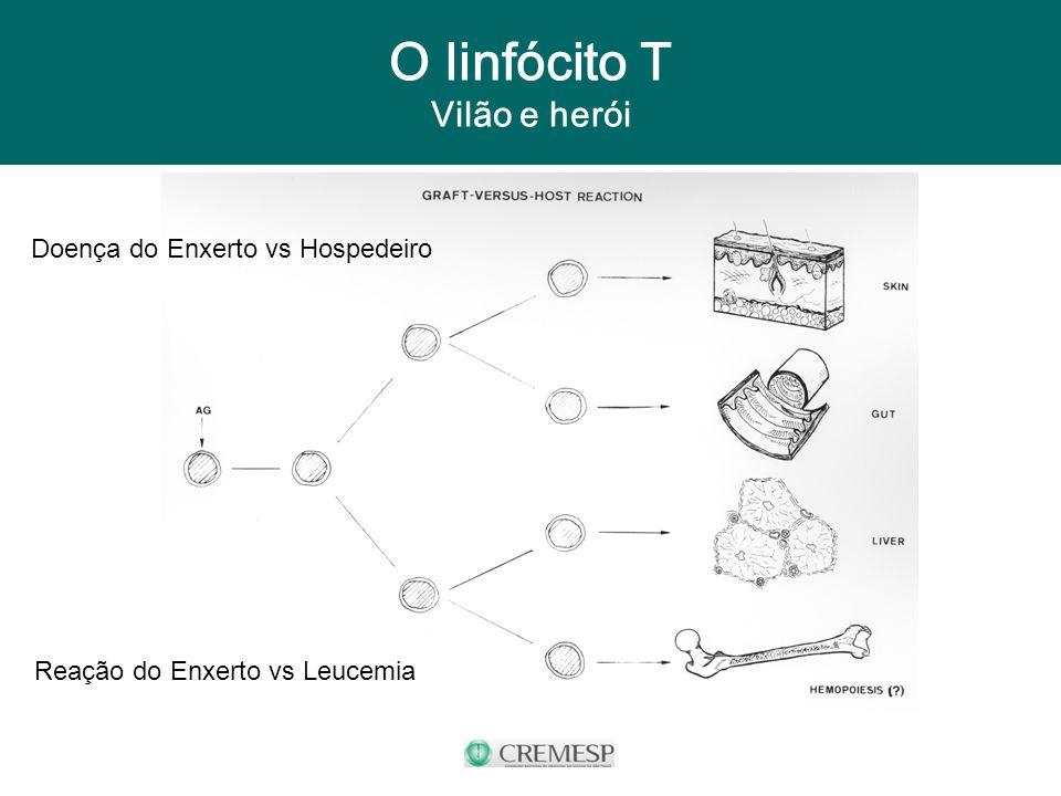 O linfócito T Vilão e herói