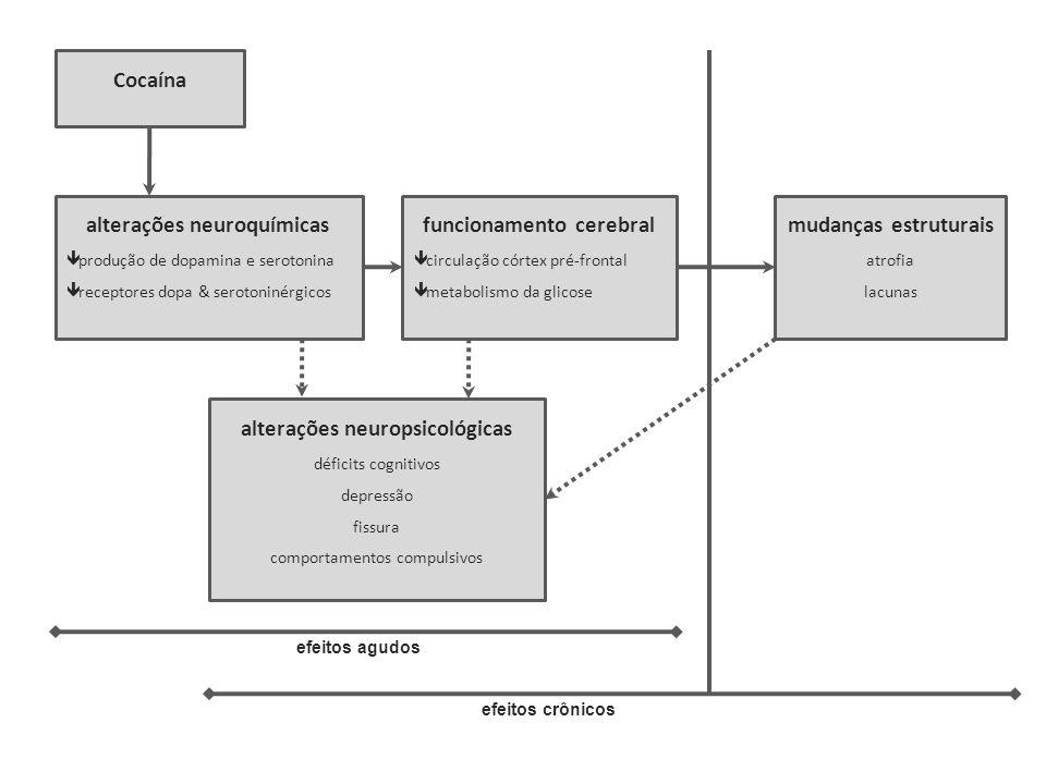 alterações neuroquímicas funcionamento cerebral mudanças estruturais