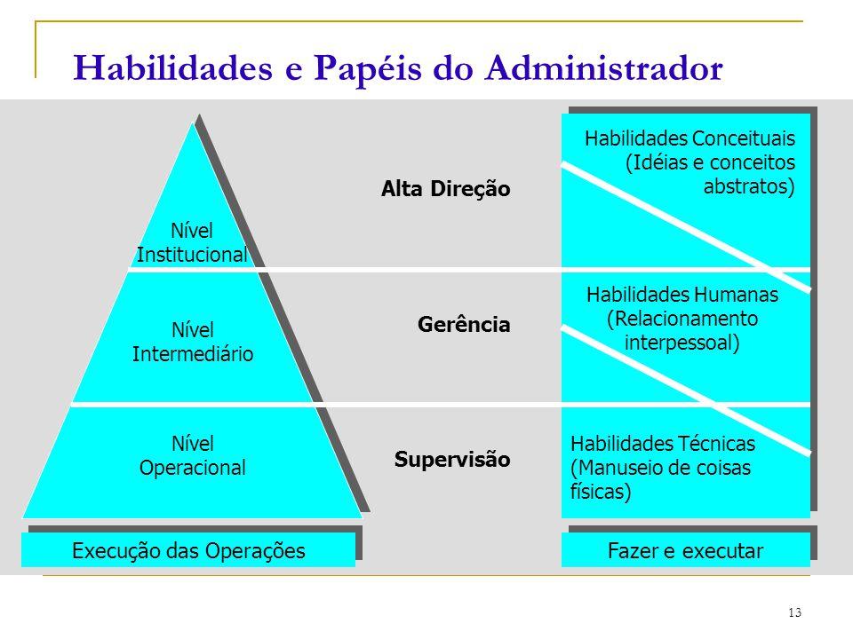 Habilidades e Papéis do Administrador