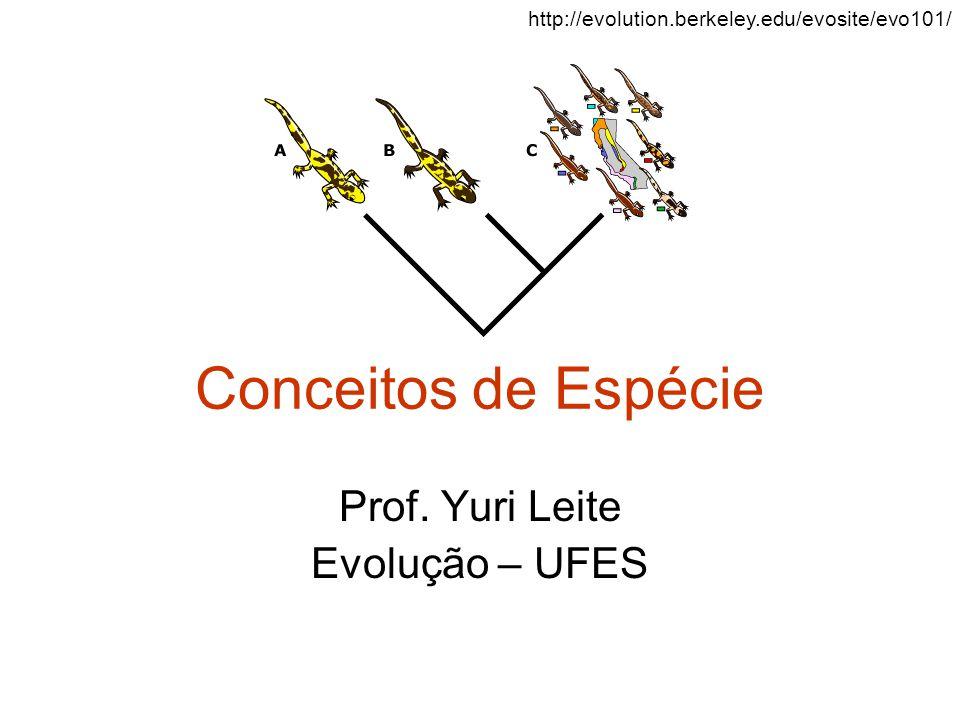 Prof. Yuri Leite Evolução – UFES