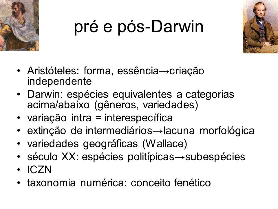 pré e pós-Darwin Aristóteles: forma, essência→criação independente