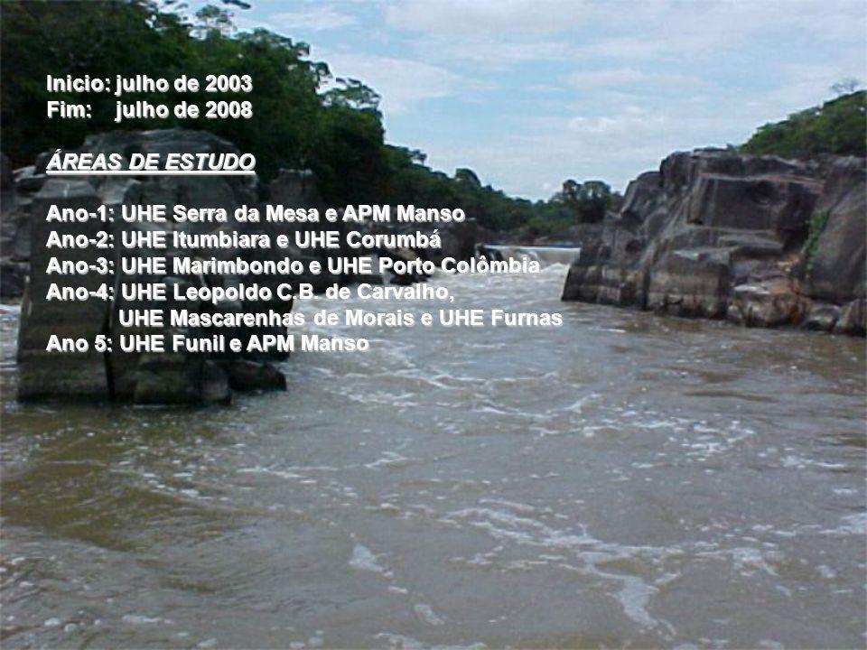 Inicio: julho de 2003 Fim: julho de 2008. ÁREAS DE ESTUDO. Ano-1: UHE Serra da Mesa e APM Manso.