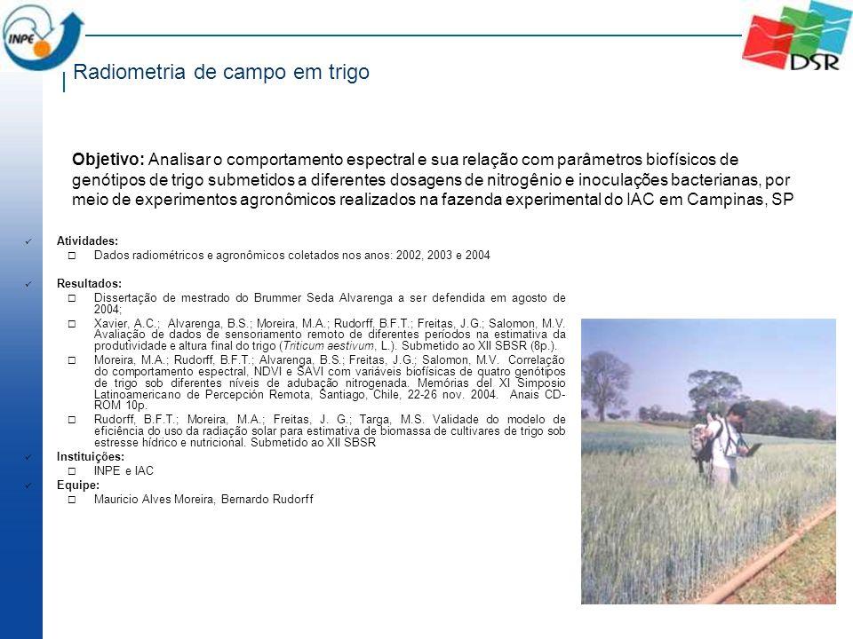 Radiometria de campo em trigo